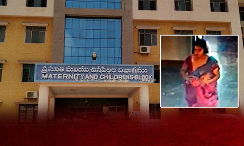 Nellore Police Chases Newly Born Baby Kidnap Case, నెల్లూరులో బాలుడి కిడ్నాప్.. 3గంటల్లో ఛేజ్