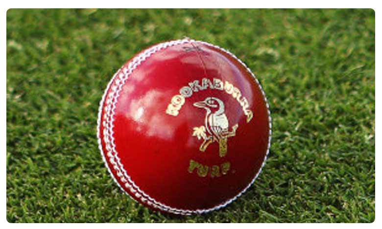 Microchipped cricket ball may soon help umpires in Big Bash League, మైక్రోచిప్తో క్రికెట్ బాల్… 'ఇస్మార్ట్' ఐడియా!