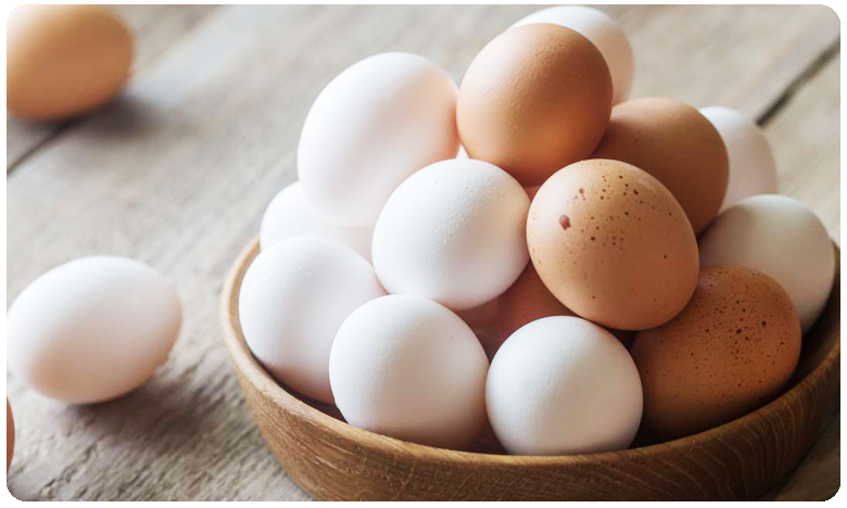 Crushed Egg shells could Help Repair Bone Damage