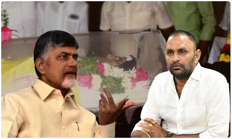 AP Minister Kodali Nani Controversial Comments on Chandrababu Naidu