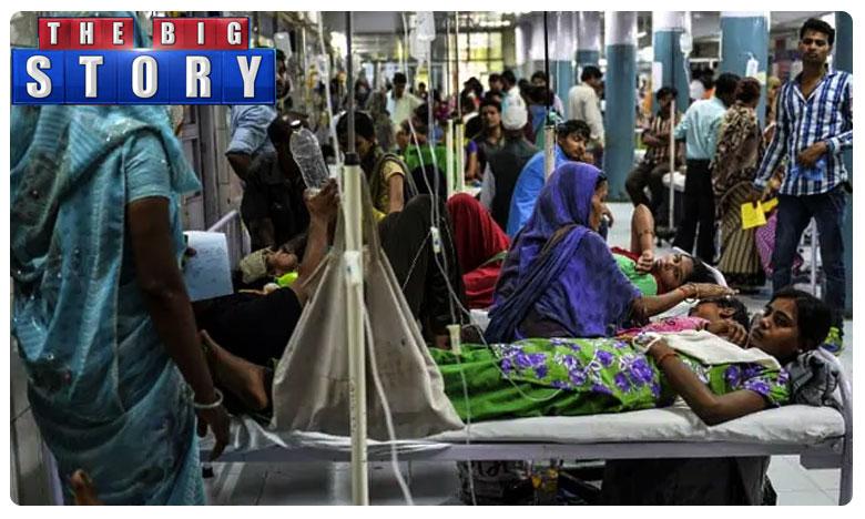 Dengue virus is transmitted by Mosquitoes, డెంగ్యూ కి చెక్ పెట్టిన ఢిల్లీ.. ఎలా ? అదే పొలిటికల్ విల్.. పబ్లిక్ సపోర్ట్..