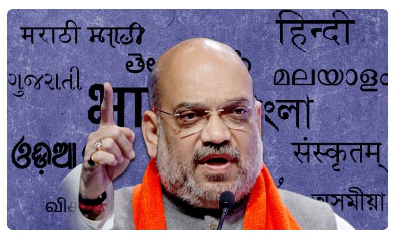 one nation one language no hindi with pressure, ప్రాంతీయ భాషలే పట్టుగొమ్మలు