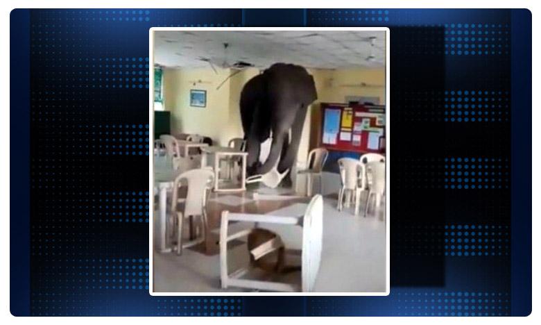 Some people later chased the elephant away by waving fire., ' వామ్మో ? ' సైనిక ' క్యాంటీన్ లో ' ఘీంకారాలా ' ?