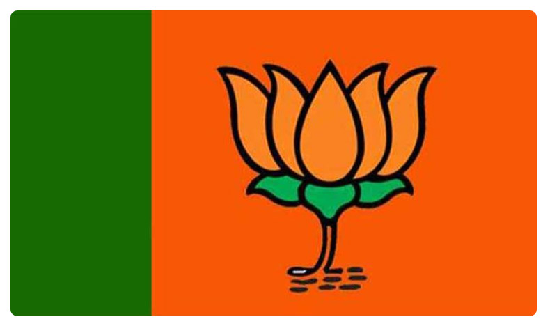 Jharkhand Assembly Elections, Jharkand Elections