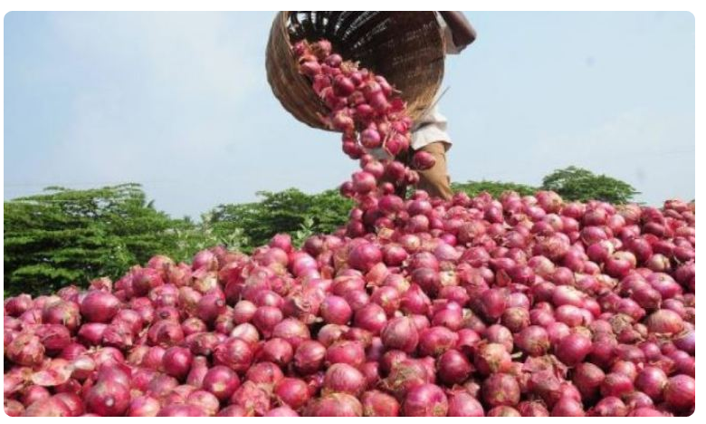 Onion prices down in kurnool market, గుడ్ న్యూస్.. భారీగా తగ్గిన ఉల్లి ధర.. కర్నూల్ మార్కెట్లో ఎంతంటే..?