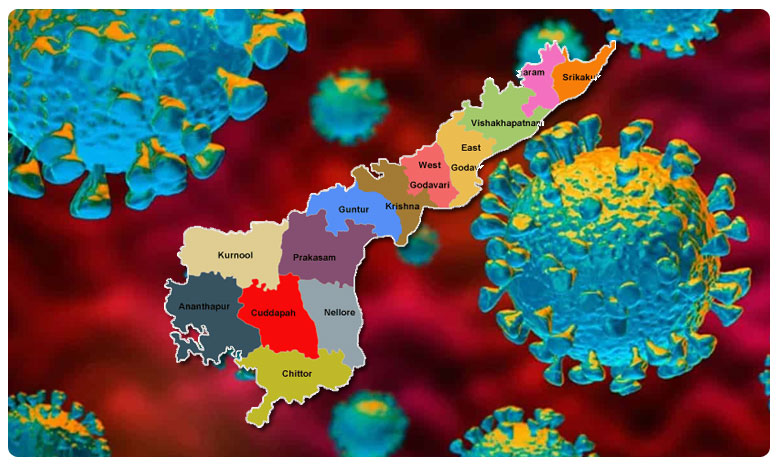 coronavirus positive cases rises 16097 in andhra pradesh death toll at 198, ఏపీలో ఒక్కరోజులో నమోదైన పాజిటివ్ కేసులు..మరణాల సంఖ్య?