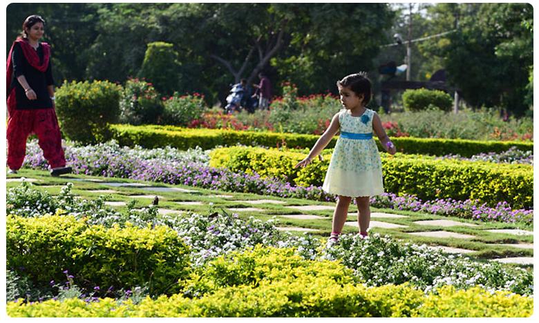 ramchan dance with his nephew navishka, నవిష్కతో స్టెప్పులేసిన రామ్ చరణ్