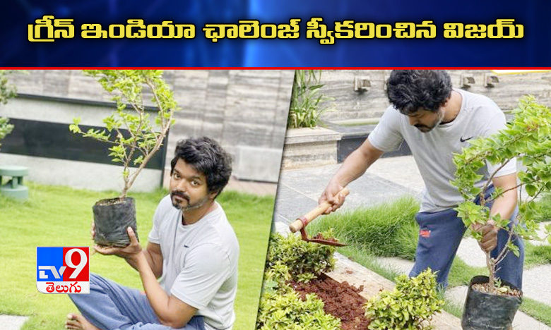 Tamil Actor Ilayathalapathy Vijay Accepts Green India Challenge, మహేష్ ఛాలెంజ్ను స్వీకరించి మొక్కలు నాటిన ఇళయథలపతి విజయ్