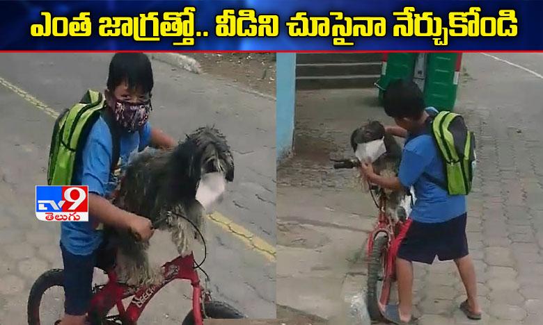 boy putting face mask on his pet dog goes viral, వైరల్ వీడియో : ఎంత జాగ్రత్తో..! వీడిని చూసైనా నేర్చుకోండి..!