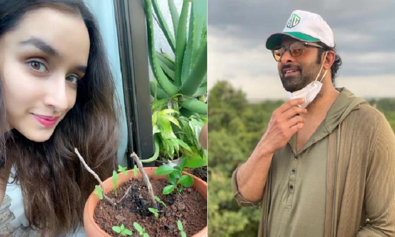 Shraddha Kapoor Accomplishes Green India Challenge Thanks Prabhas For Nominating Her, ప్రభాస్ ఛాలెంజ్ స్వీకరంచిన శ్రద్ధా..
