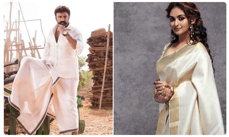 Popular Malayalam actress confirmed for Balayya's next, బాలయ్య-బోయపాటి సినిమాలో హీరోయిన్ ఈమే !