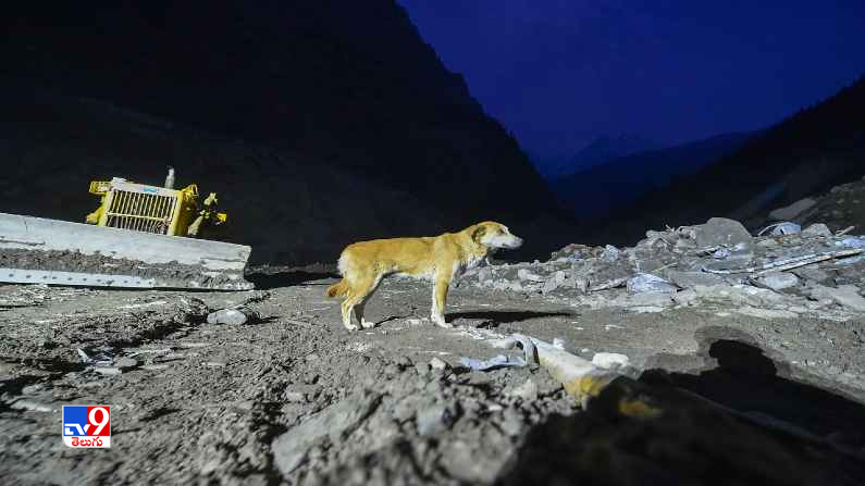 Uttarkhand Glacier Burst