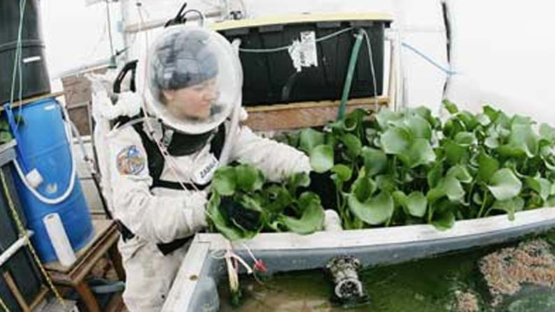 Space Agriculture 2