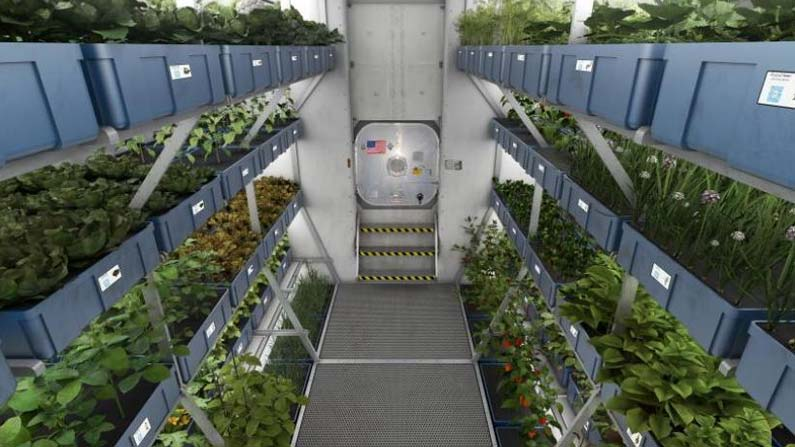 Space Agriculture 4