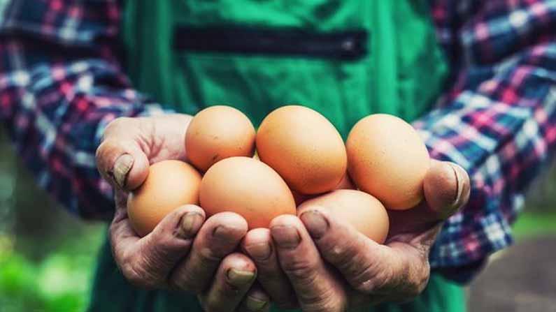 Man Eating Eggs 4