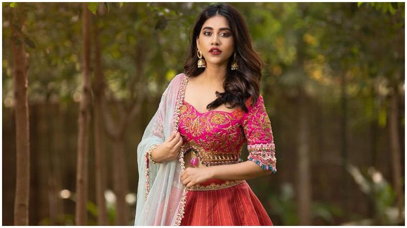 Nabha Natesh (1)