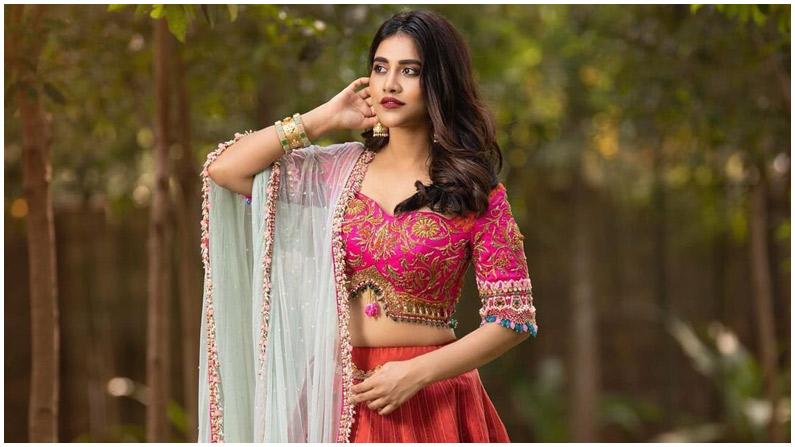 Nabha Natesh (2)