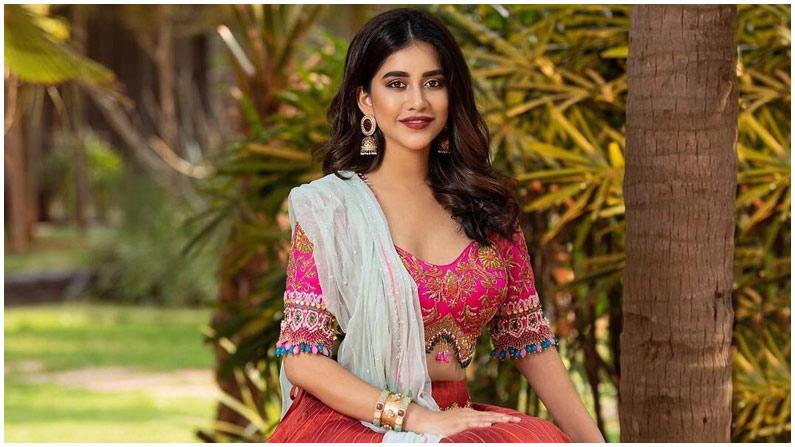 Nabha Natesh (3)