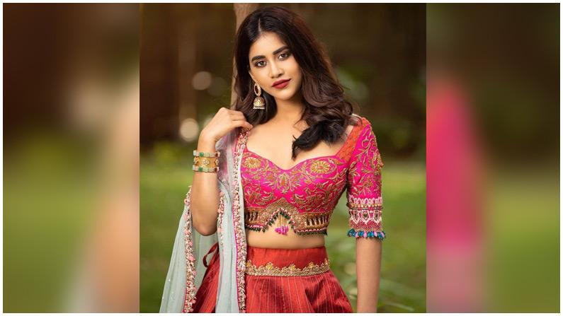 Nabha Natesh (4)