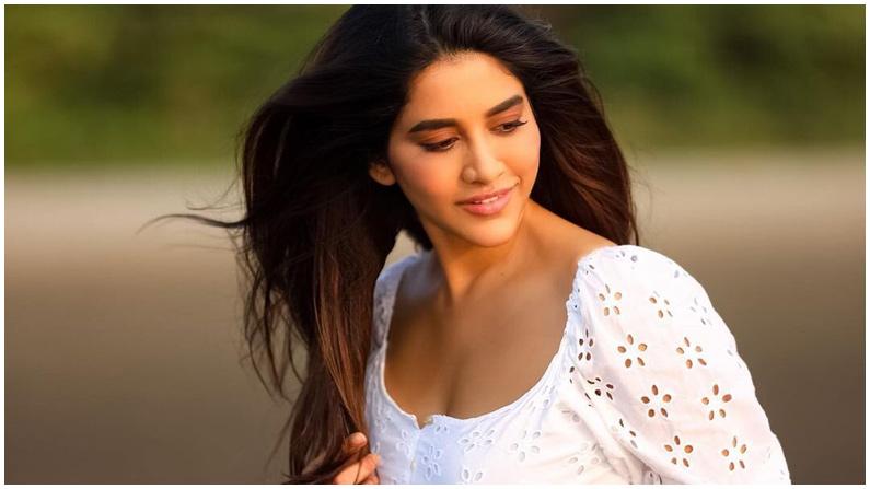 Nabha Natesh (5)