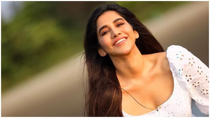 Nabha Natesh (6)