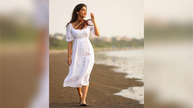 Nabha Natesh (7)