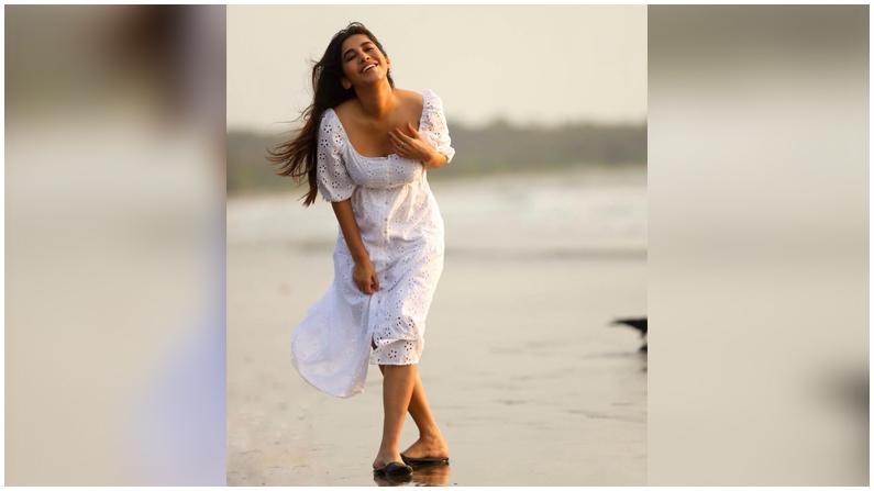 Nabha Natesh (8)