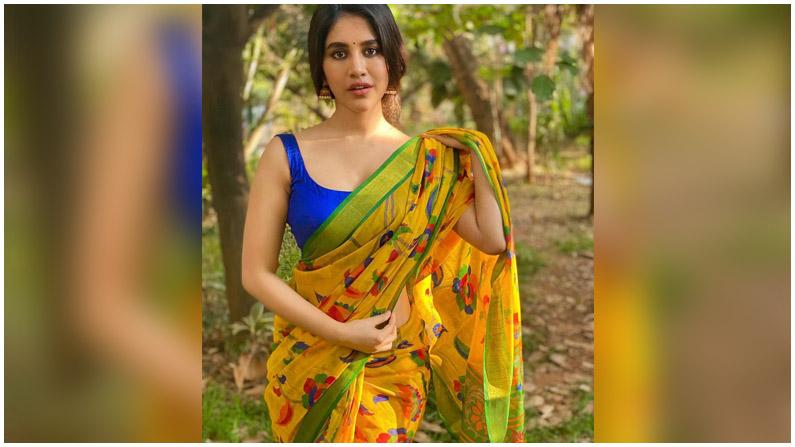 Nabha Natesh (9)