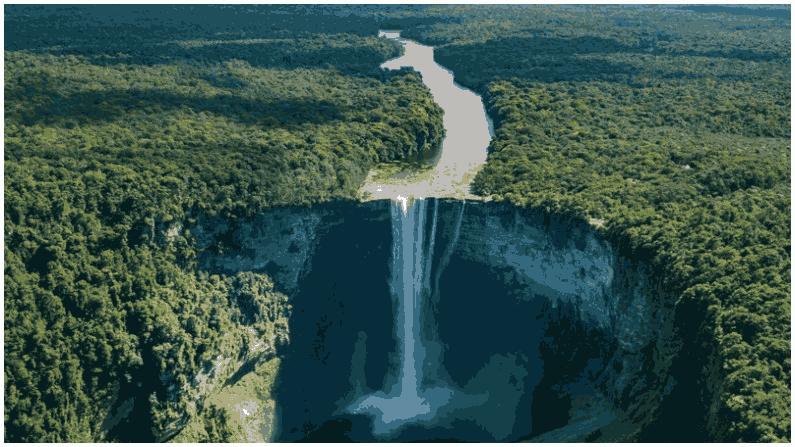 Amazon Forest 7